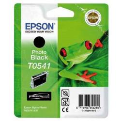 Cart EPSON - T0541 - Noir photo - R800 / R1800