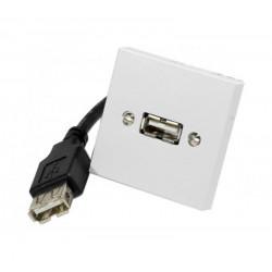 Plastron adaptateur USB A-A - F/F - 10 cm - 45x45